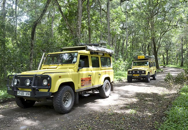 Our Safari Hire Vehicles