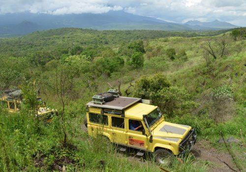 Safari vehicle Meru behind