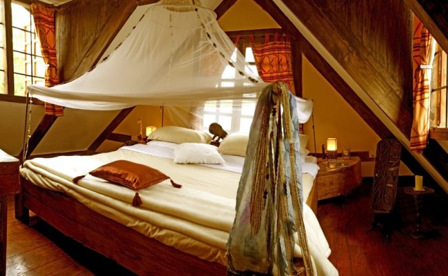 Simba room 2