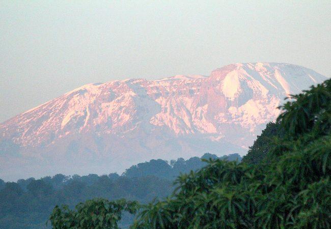 kilimanjaro-from-twiga-lodge2
