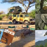 safaris, giraffe, elephants, magazines, camp site